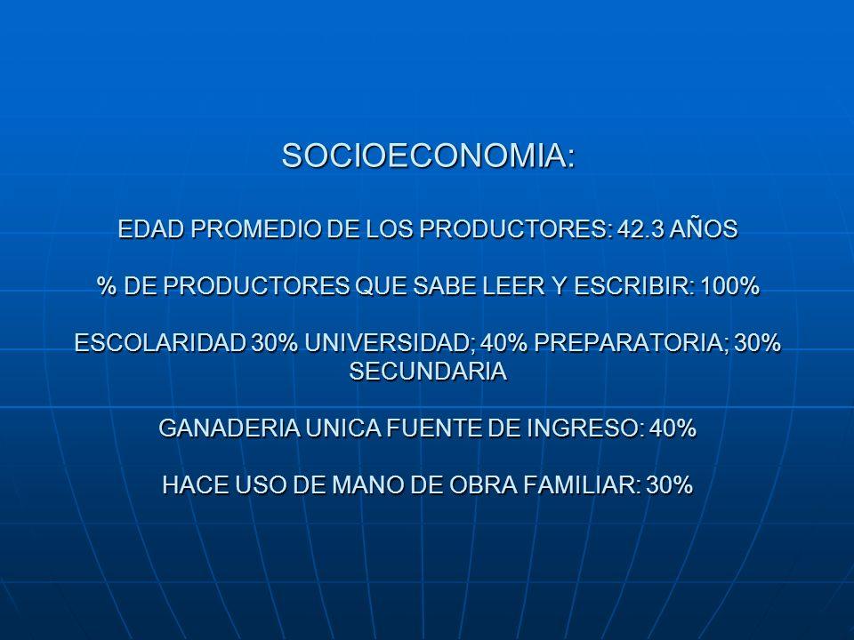 SOCIOECONOMIA: EDAD PROMEDIO DE LOS PRODUCTORES: 42.3 AÑOS % DE PRODUCTORES QUE SABE LEER Y ESCRIBIR: 100% ESCOLARIDAD 30% UNIVERSIDAD; 40% PREPARATOR