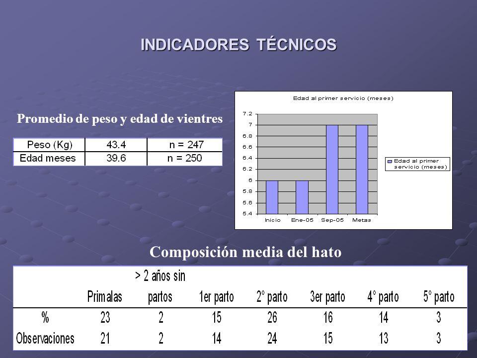 INDICADORES TÉCNICOS Tipos de partos Tipo de parto 0ct 04- Ener05 n Feb 05- Abril 05 n Ago 05- Feb 06 NSencillo716091 Doble273858 Triple223 Prolificidad: 1.39