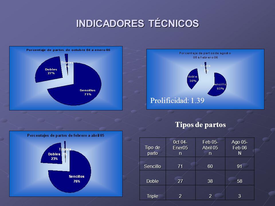 INDICADORES TÉCNICOS 0ct 04-Ener05 Feb 05- Abril 05 Agto 05-Feb 06 no.