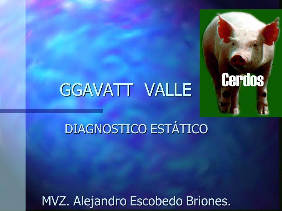 GGAVATT VALLE DIAGNOSTICO ESTÁTICO MVZ. Alejandro Escobedo Briones.