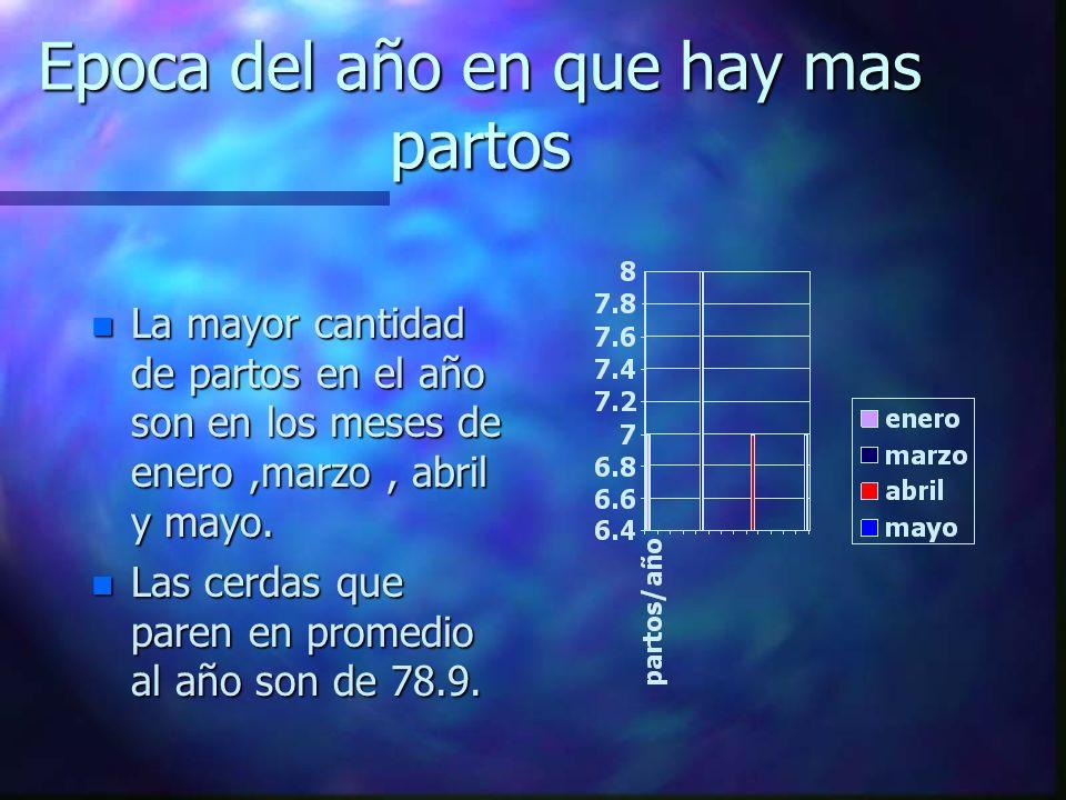 Epoca del año en que hay mas partos n La mayor cantidad de partos en el año son en los meses de enero,marzo, abril y mayo.