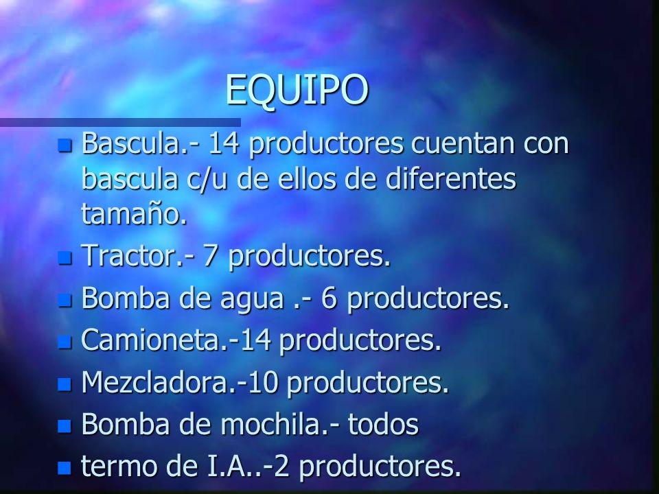 EQUIPO n Bascula.- 14 productores cuentan con bascula c/u de ellos de diferentes tamaño.