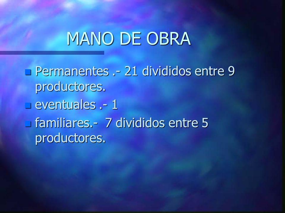 MANO DE OBRA n Permanentes.- 21 divididos entre 9 productores.
