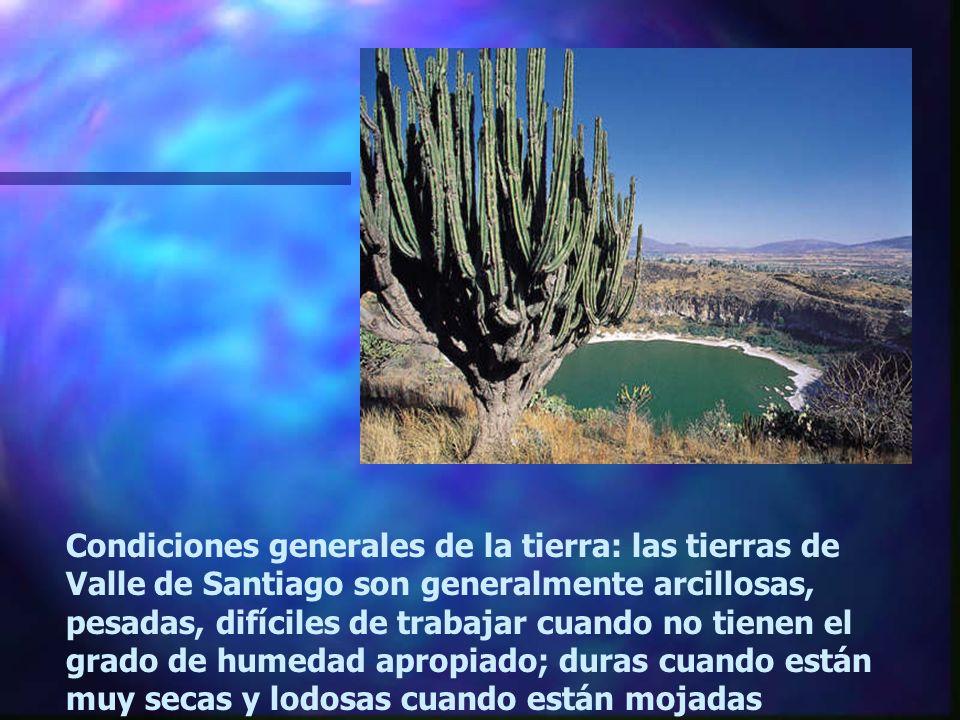 Condiciones generales de la tierra: las tierras de Valle de Santiago son generalmente arcillosas, pesadas, difíciles de trabajar cuando no tienen el grado de humedad apropiado; duras cuando están muy secas y lodosas cuando están mojadas
