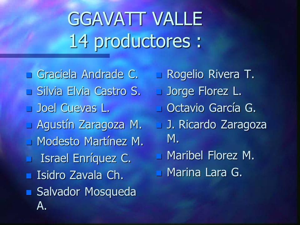 GGAVATT VALLE 14 productores : n Graciela Andrade C.