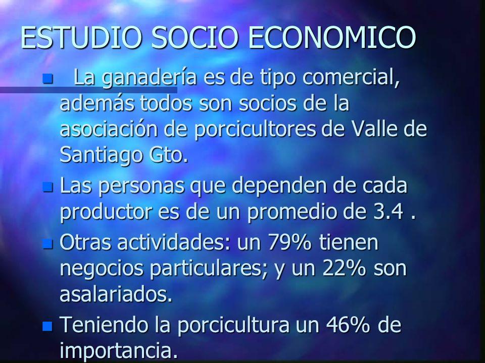 ESTUDIO SOCIO ECONOMICO n La ganadería es de tipo comercial, además todos son socios de la asociación de porcicultores de Valle de Santiago Gto.