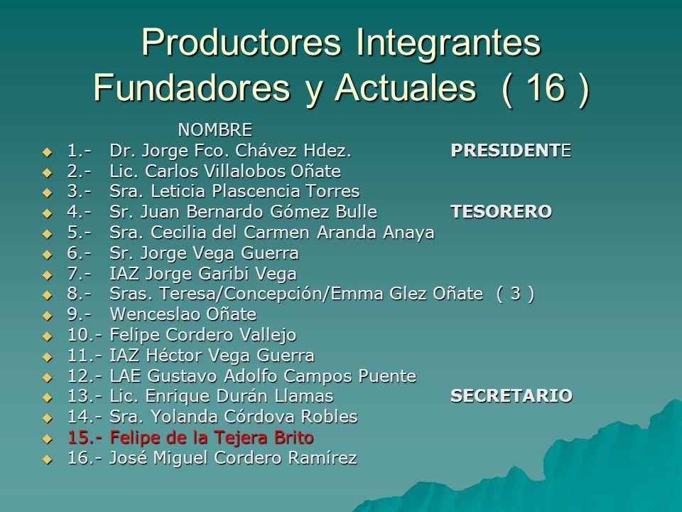 Implementación Parcelas Forrajeras Implementación Parcelas Forrajeras –Actual elaboración del proyecto ind.