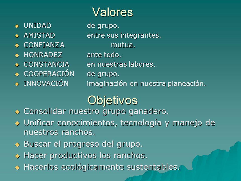 GGAVATT Holístico de La Sierra Localización