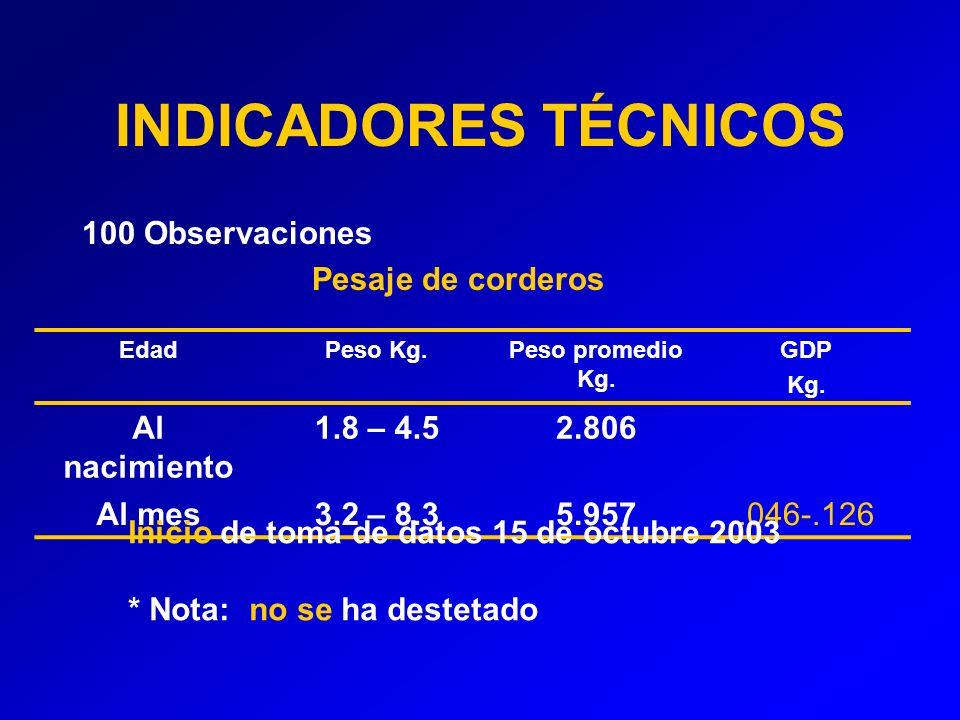 INDICADORES TÉCNICOS 100 Observaciones Pesaje de corderos EdadPeso Kg.Peso promedio Kg.