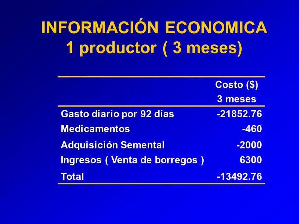 Costo ($) 3 meses Gasto diario por 92 días-21852.76 Medicamentos-460 Adquisición Semental-2000 Ingresos ( Venta de borregos )6300 Total-13492.76 INFORMACIÓN ECONOMICA 1 productor ( 3 meses)
