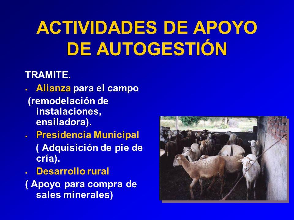 ACTIVIDADES DE APOYO DE AUTOGESTIÓN TRAMITE.