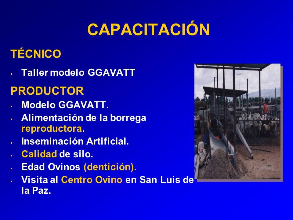 CAPACITACIÓN TÉCNICO Taller modelo GGAVATT PRODUCTOR Modelo GGAVATT.
