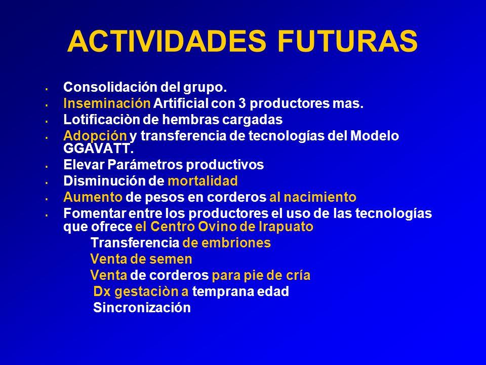 ACTIVIDADES FUTURAS Consolidación del grupo.Inseminación Artificial con 3 productores mas.