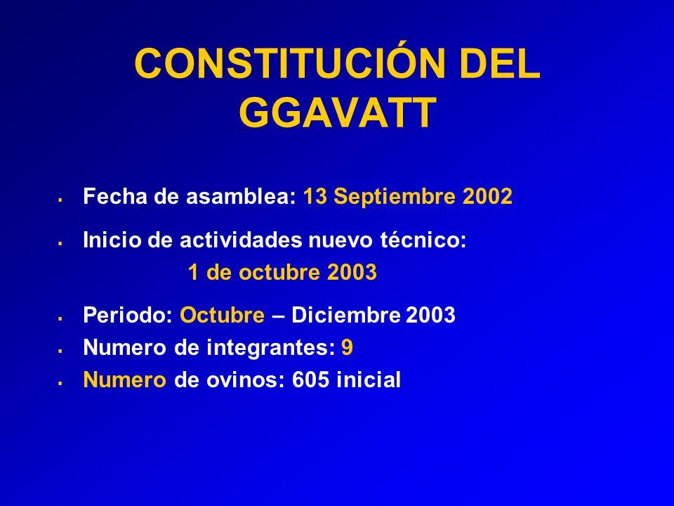 CONSTITUCIÓN DEL GGAVATT Fecha de asamblea: 13 Septiembre 2002 Inicio de actividades nuevo técnico: 1 de octubre 2003 Periodo: Octubre – Diciembre 2003 Numero de integrantes: 9 Numero de ovinos: 605 inicial