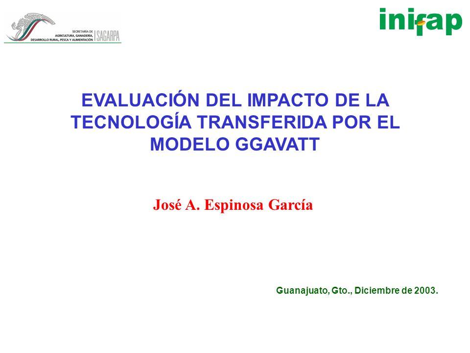 EVALUACIÓN DEL IMPACTO DE LA TECNOLOGÍA TRANSFERIDA POR EL MODELO GGAVATT José A. Espinosa García Guanajuato, Gto., Diciembre de 2003.