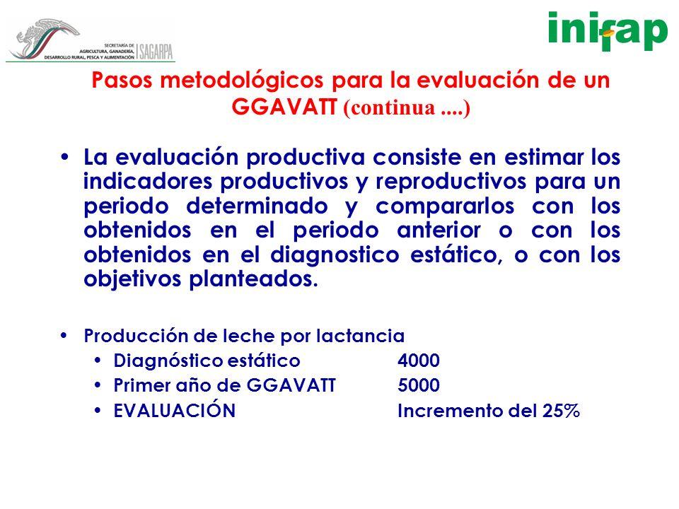 Pasos metodológicos para la evaluación de un GGAVATT (continua....) La evaluación productiva consiste en estimar los indicadores productivos y reprodu
