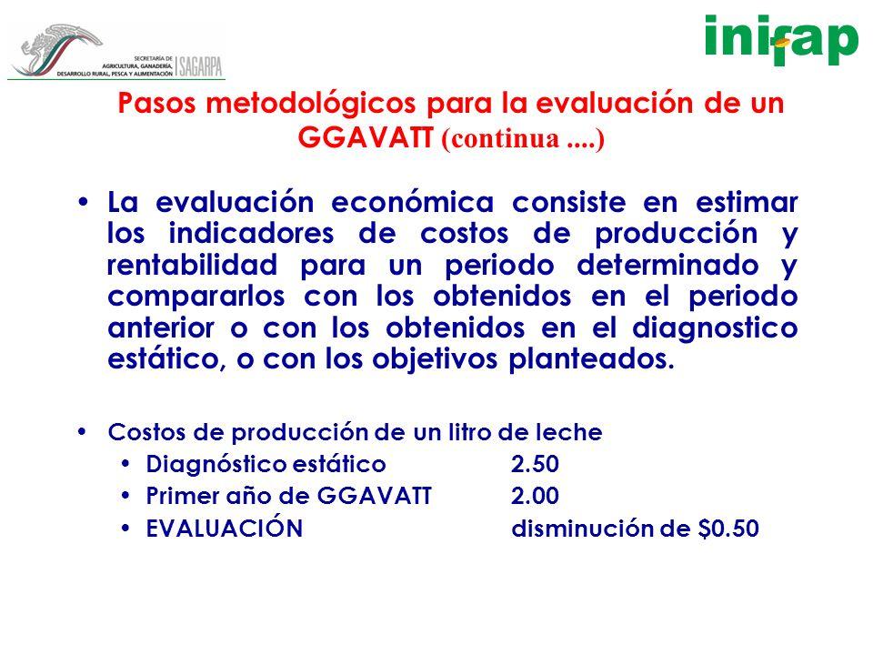 Pasos metodológicos para la evaluación de un GGAVATT (continua....) La evaluación económica consiste en estimar los indicadores de costos de producció