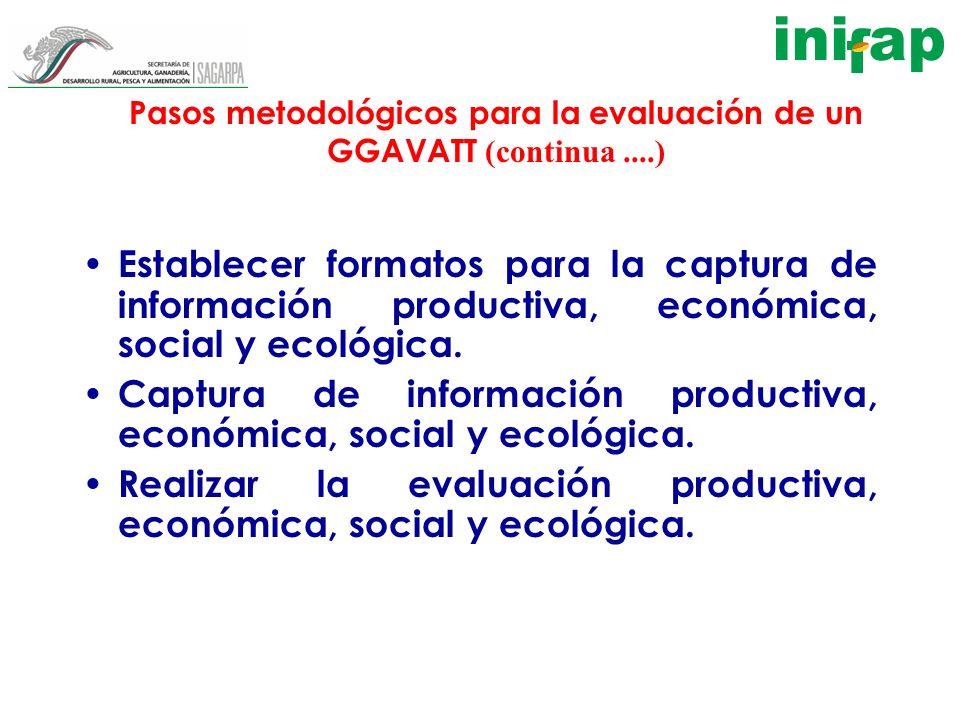 Pasos metodológicos para la evaluación de un GGAVATT (continua....) Establecer formatos para la captura de información productiva, económica, social y