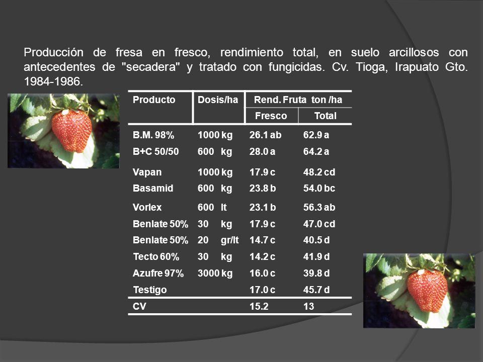 ProductoDosis/ha Rend. Fruta ton /ha FrescoTotal B.M. 98%1000 kg26.1 ab62.9 a B+C 50/50600 kg28.0 a64.2 a Vapan1000 kg17.9 c48.2 cd Basamid600 kg23.8