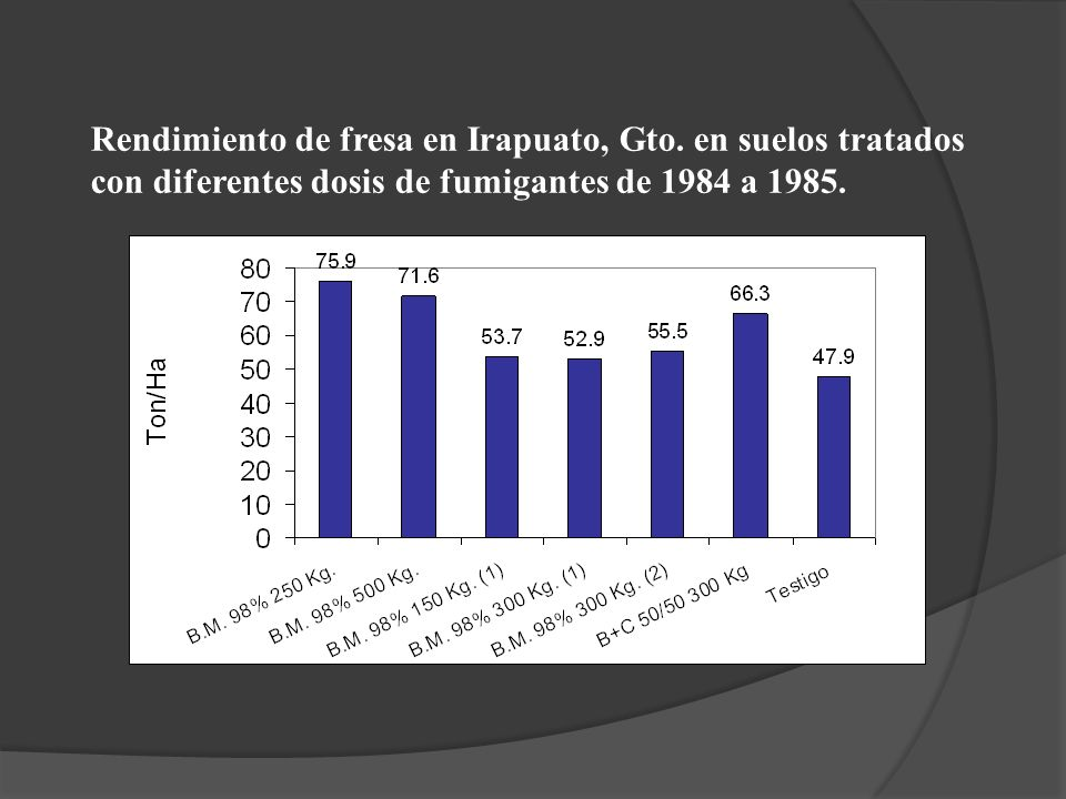 Rendimiento de fresa en Irapuato, Gto. en suelos tratados con diferentes dosis de fumigantes de 1984 a 1985.
