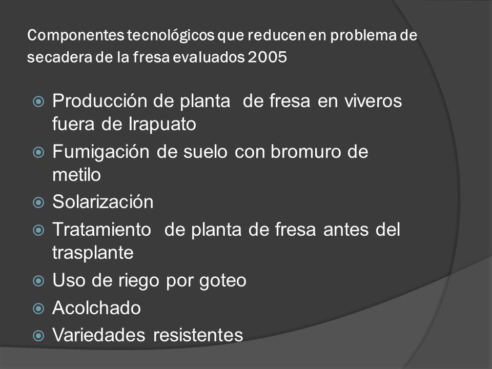 Componentes tecnológicos que reducen en problema de secadera de la fresa evaluados 2005 Producción de planta de fresa en viveros fuera de Irapuato Fum