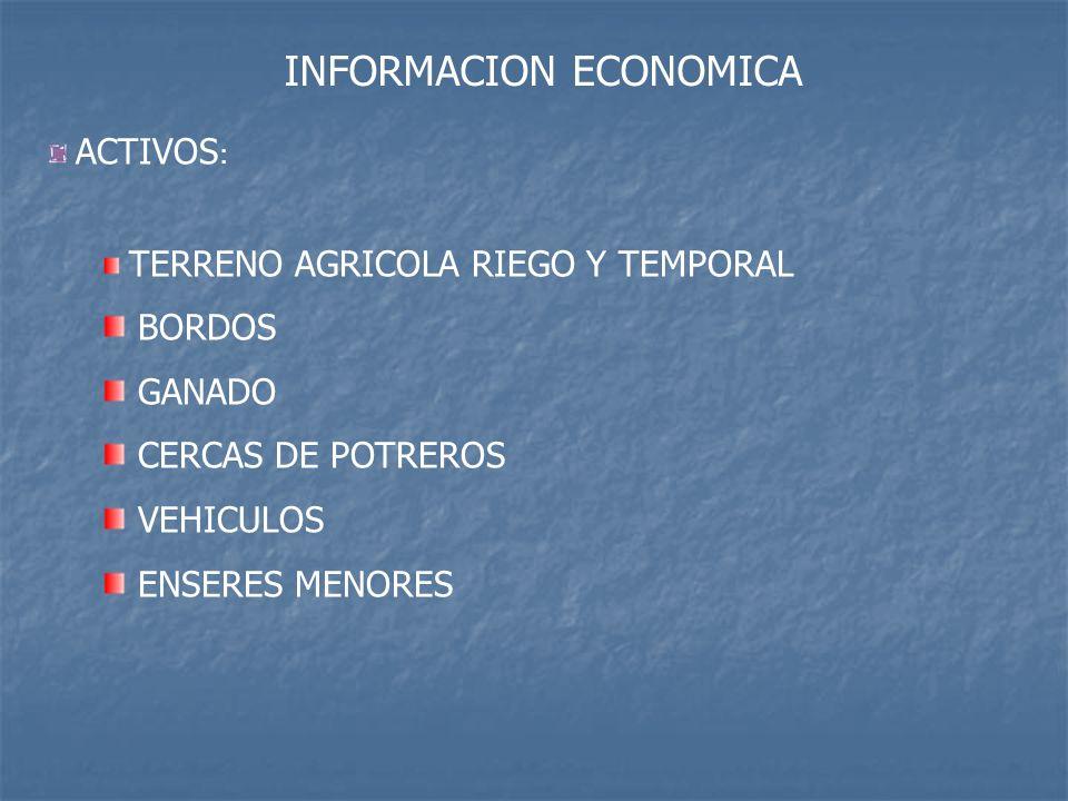 INFORMACION ECONOMICA ACTIVOS : TERRENO AGRICOLA RIEGO Y TEMPORAL BORDOS GANADO CERCAS DE POTREROS VEHICULOS ENSERES MENORES