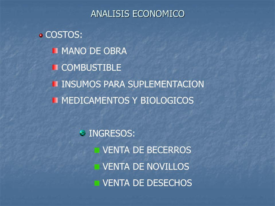 ANALISIS ECONOMICO COSTOS: MANO DE OBRA COMBUSTIBLE INSUMOS PARA SUPLEMENTACION MEDICAMENTOS Y BIOLOGICOS INGRESOS: VENTA DE BECERROS VENTA DE NOVILLO