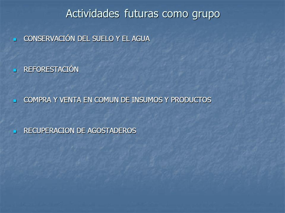 Actividades futuras como grupo CONSERVACIÓN DEL SUELO Y EL AGUA CONSERVACIÓN DEL SUELO Y EL AGUA REFORESTACIÓN REFORESTACIÓN COMPRA Y VENTA EN COMUN D