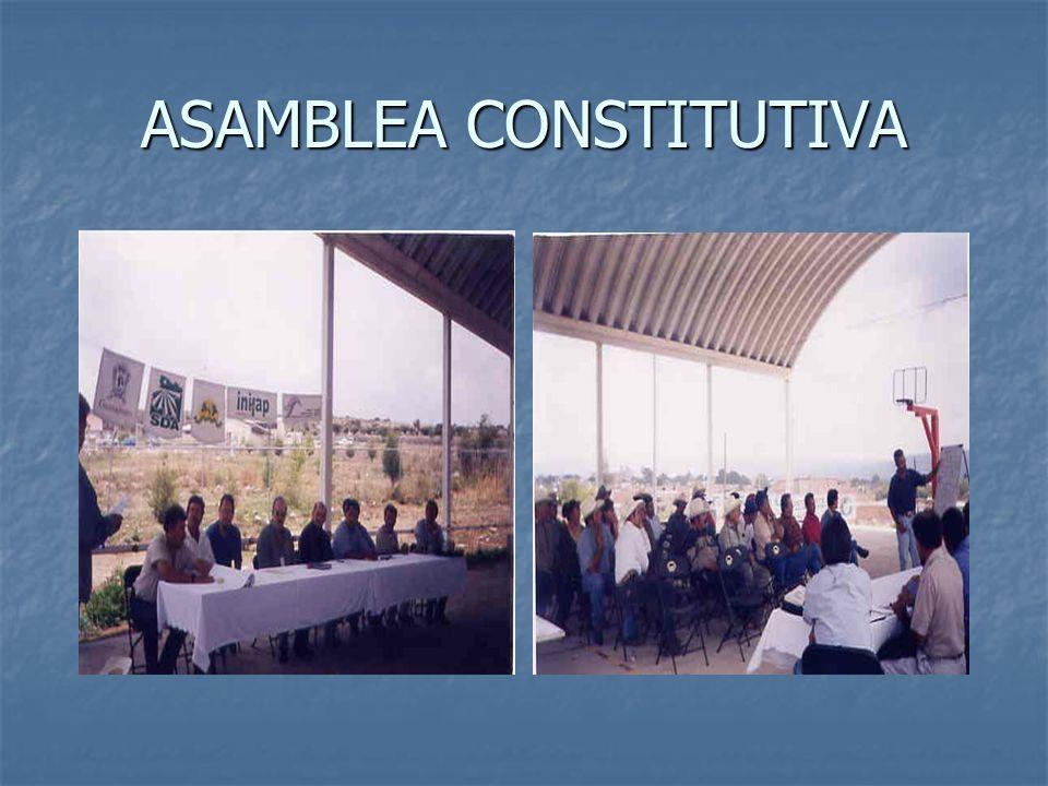ASAMBLEA CONSTITUTIVA
