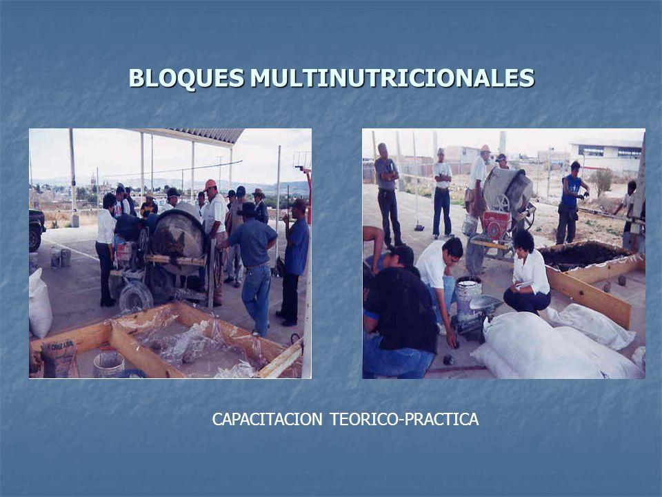 BLOQUES MULTINUTRICIONALES CAPACITACION TEORICO-PRACTICA