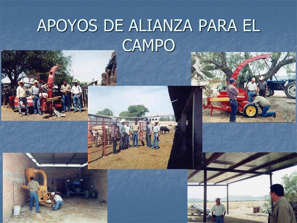 APOYOS DE ALIANZA PARA EL CAMPO