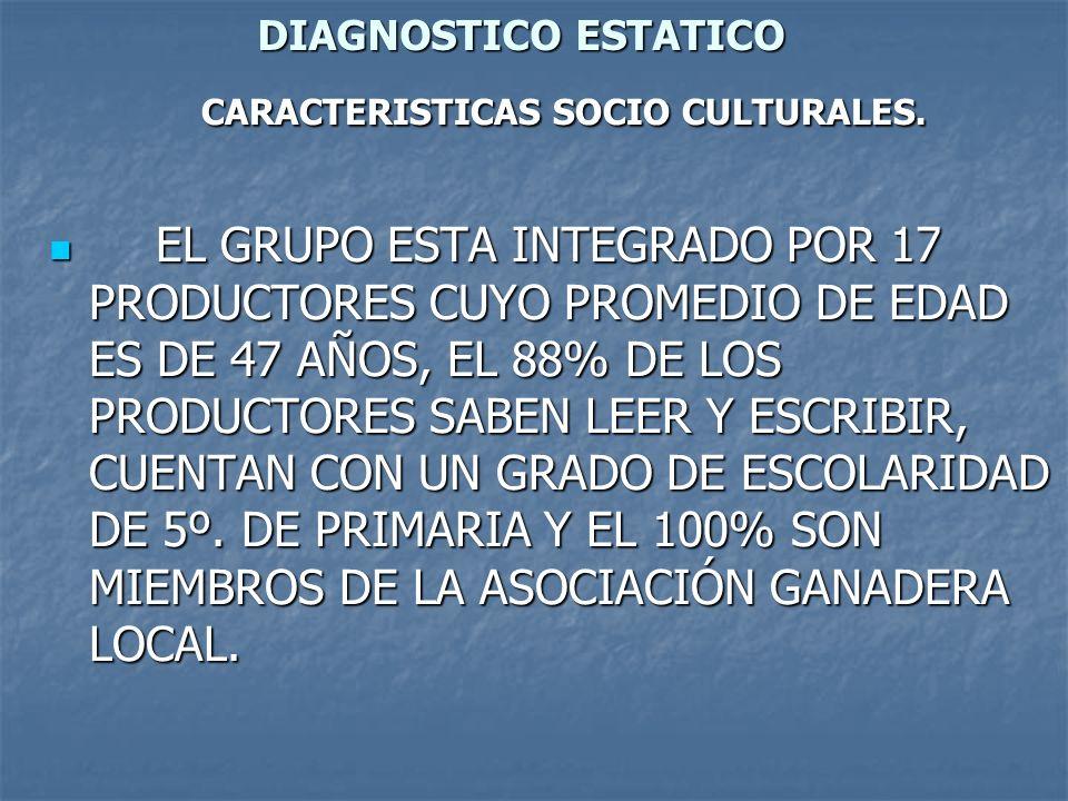 DIAGNOSTICO ESTATICO CARACTERISTICAS SOCIO CULTURALES. CARACTERISTICAS SOCIO CULTURALES. EL GRUPO ESTA INTEGRADO POR 17 PRODUCTORES CUYO PROMEDIO DE E