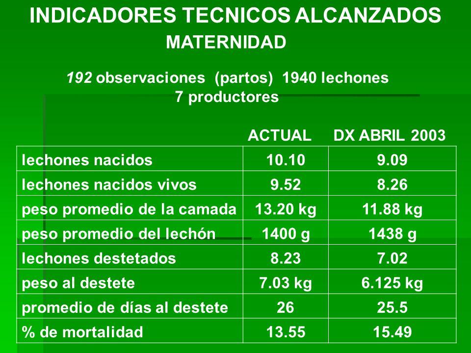 INDICADORES TECNICOS ALCANZADOS MATERNIDAD 192 observaciones (partos) 1940 lechones 7 productores ACTUALDX ABRIL 2003 lechones nacidos10.109.09 lechon