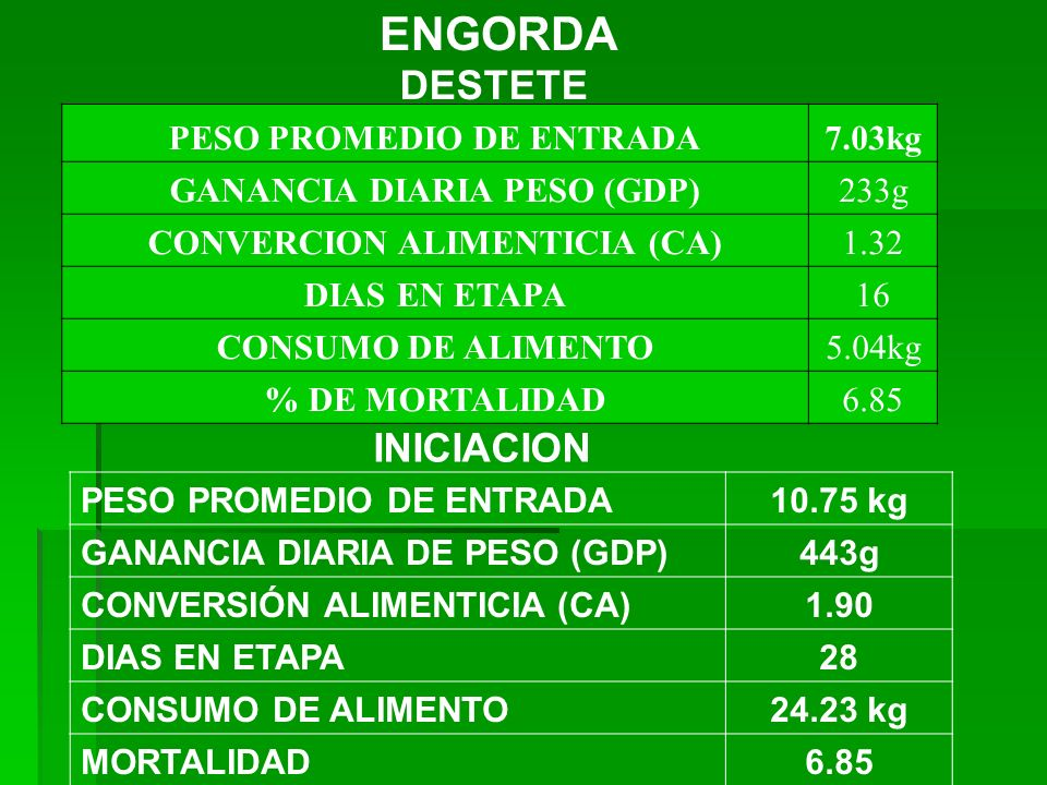 DESTETE PESO PROMEDIO DE ENTRADA7.03kg GANANCIA DIARIA PESO (GDP)233g CONVERCION ALIMENTICIA (CA)1.32 DIAS EN ETAPA16 CONSUMO DE ALIMENTO5.04kg % DE M