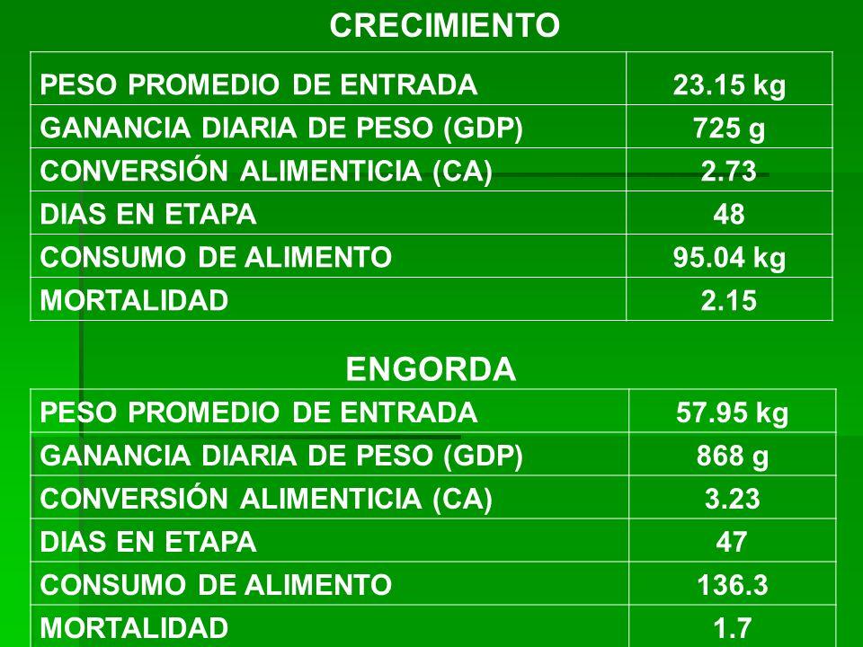 CRECIMIENTO PESO PROMEDIO DE ENTRADA23.15 kg GANANCIA DIARIA DE PESO (GDP)725 g CONVERSIÓN ALIMENTICIA (CA)2.73 DIAS EN ETAPA48 CONSUMO DE ALIMENTO95.