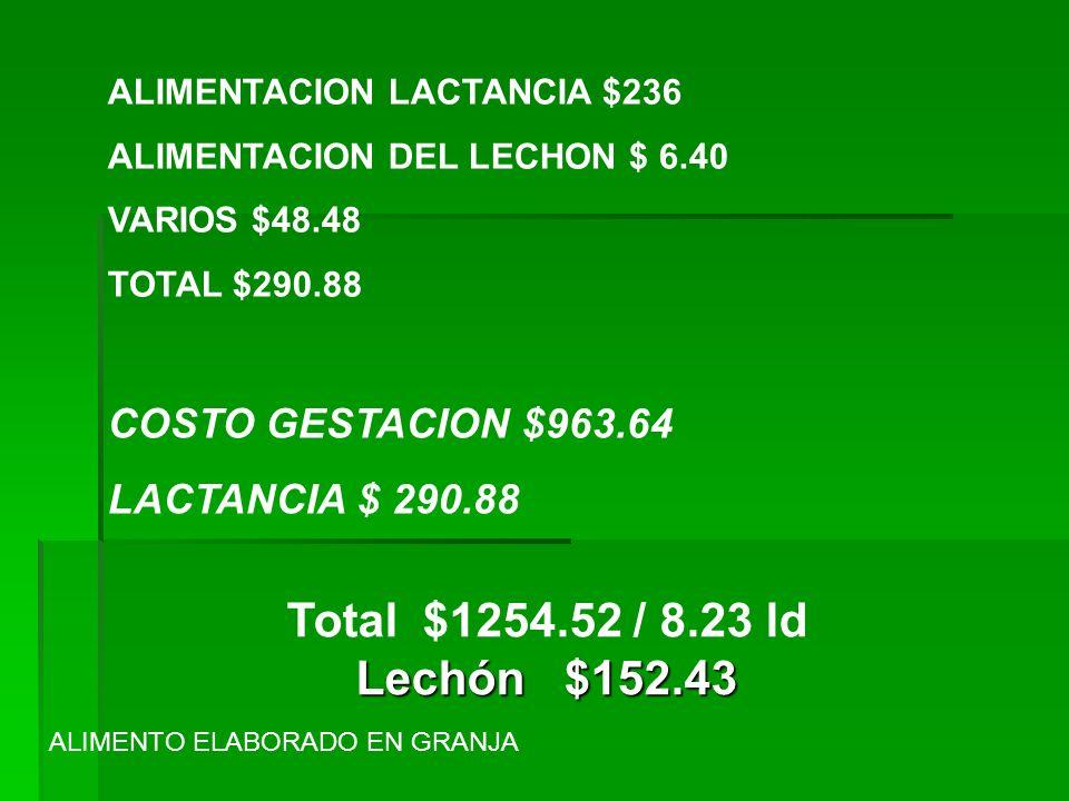 ALIMENTACION LACTANCIA $236 ALIMENTACION DEL LECHON $ 6.40 VARIOS $48.48 TOTAL $290.88 COSTO GESTACION $963.64 LACTANCIA $ 290.88 Lechón $152.43 Total