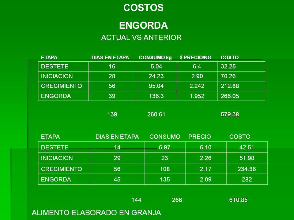 COSTOS ENGORDA ETAPADIAS EN ETAPACONSUMO kg$ PRECIO/KGCOSTO DESTETE165.046.432.25 INICIACION2824.232.9070.26 CRECIMIENTO5695.042.242212.88 ENGORDA3913