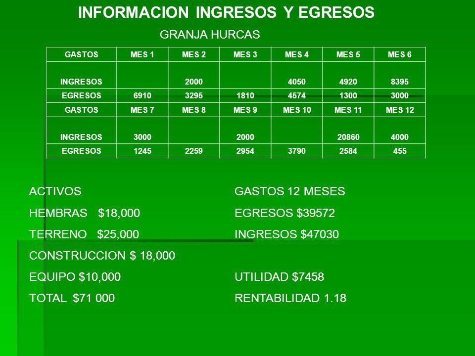 INFORMACION INGRESOS Y EGRESOS GASTOSMES 1MES 2MES 3MES 4MES 5MES 6 INGRESOS2000405049208395 EGRESOS691032951810457413003000 GASTOSMES 7MES 8MES 9MES