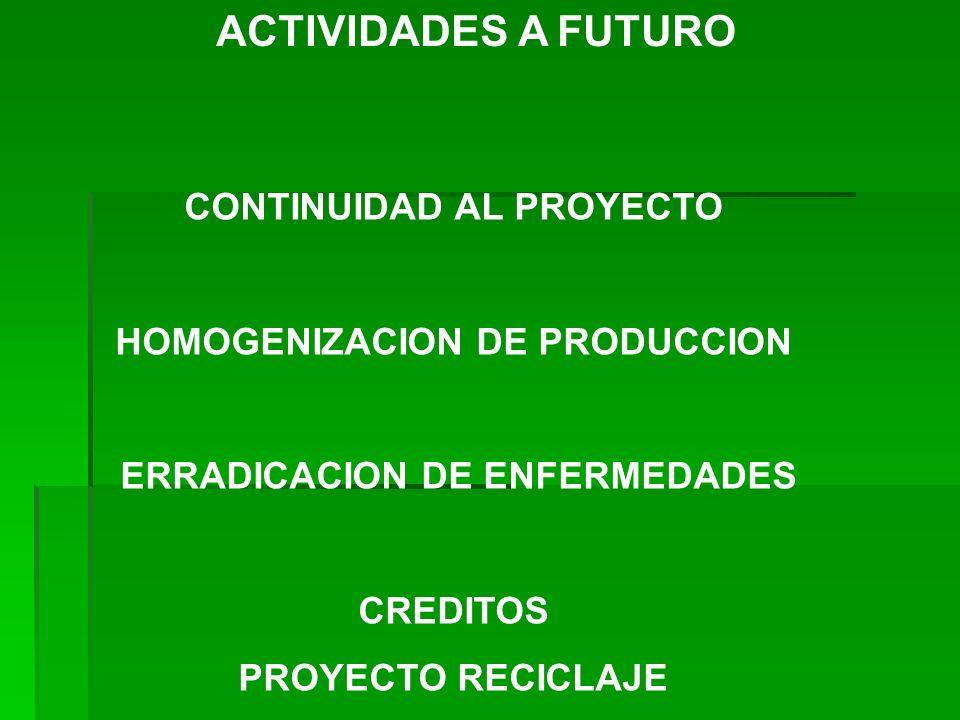 ACTIVIDADES A FUTURO CONTINUIDAD AL PROYECTO HOMOGENIZACION DE PRODUCCION ERRADICACION DE ENFERMEDADES CREDITOS PROYECTO RECICLAJE