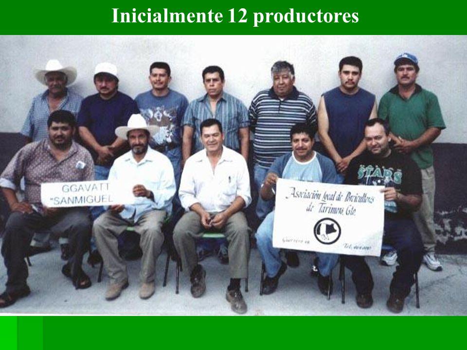Inicialmente 12 productores