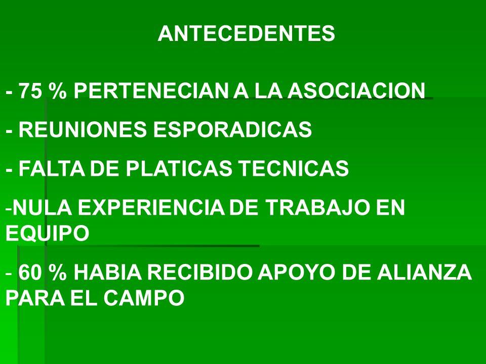ANTECEDENTES - 75 % PERTENECIAN A LA ASOCIACION - REUNIONES ESPORADICAS - FALTA DE PLATICAS TECNICAS -NULA EXPERIENCIA DE TRABAJO EN EQUIPO - 60 % HAB