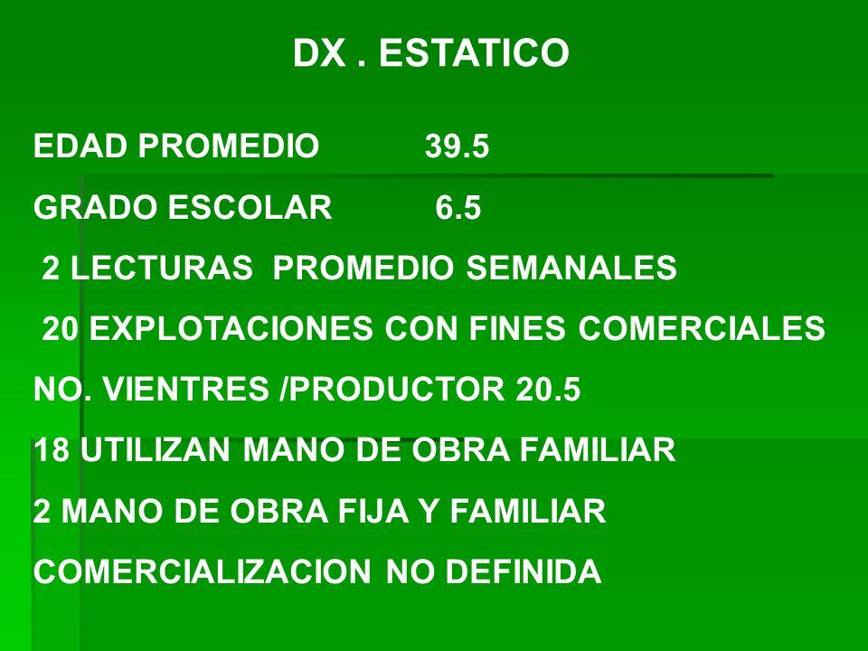 DX. ESTATICO EDAD PROMEDIO 39.5 GRADO ESCOLAR 6.5 2 LECTURAS PROMEDIO SEMANALES 20 EXPLOTACIONES CON FINES COMERCIALES NO. VIENTRES /PRODUCTOR 20.5 18