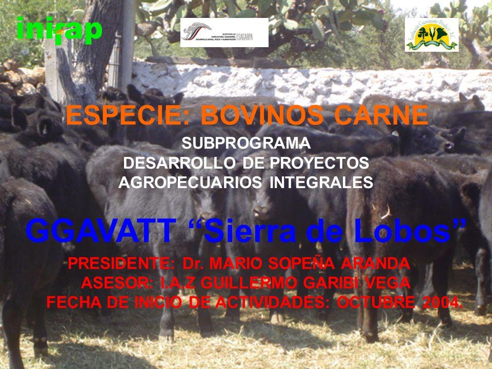 SUBPROGRAMA DESARROLLO DE PROYECTOS AGROPECUARIOS INTEGRALES PRESIDENTE: Dr. MARIO SOPEÑA ARANDA ASESOR: I.A.Z GUILLERMO GARIBI VEGA FECHA DE INICIO D