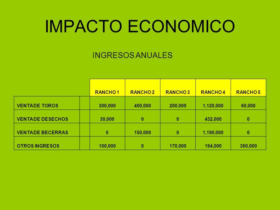 IMPACTO ECONOMICO INGRESOS ANUALES RANCHO 1RANCHO 2RANCHO 3RANCHO 4RANCHO 5 VENTA DE TOROS 300,000400,000200,0001,120,00060,000 VENTA DE DESECHOS 30,0