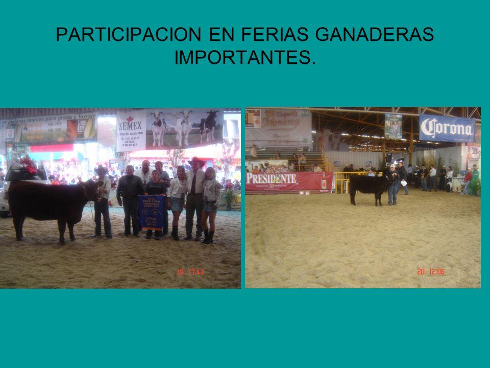 PARTICIPACION EN FERIAS GANADERAS IMPORTANTES.