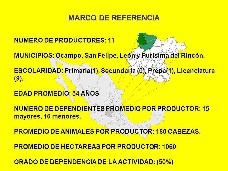 NUMERO DE PRODUCTORES: 11 MUNICIPIOS: Ocampo, San Felipe, León y Purísima del Rincón. ESCOLARIDAD: Primaria(1), Secundaria (0), Prepa(1), Licenciatura