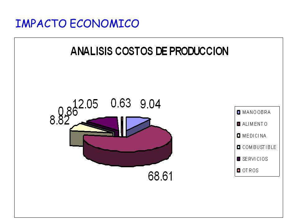 IMPACTO ECONOMICO