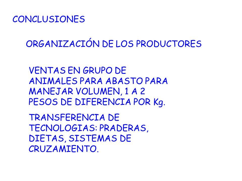 CONCLUSIONES ORGANIZACIÓN DE LOS PRODUCTORES VENTAS EN GRUPO DE ANIMALES PARA ABASTO PARA MANEJAR VOLUMEN, 1 A 2 PESOS DE DIFERENCIA POR Kg. TRANSFERE
