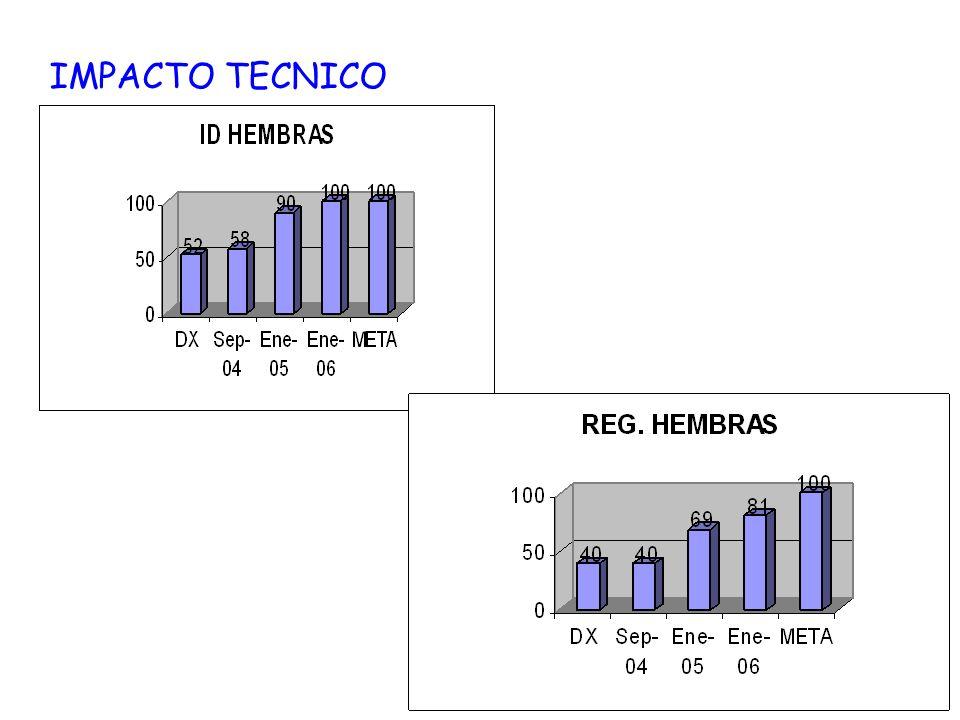 IMPACTO TECNICO