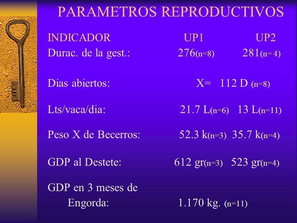 PARAMETROS REPRODUCTIVOS INDICADOR UP1UP2 Durac. de la gest.: 276 (n=8) 281 (n= 4) Dias abiertos:X= 112 D (n=8) Lts/vaca/dia: 21.7 L (n=6) 13 L (n=11)